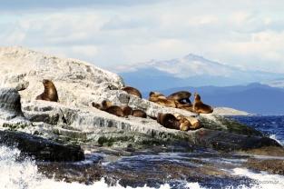 Islas nas proximidades de Ushuaia