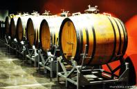 Barris de carvalho para armazenamento dos vinhos