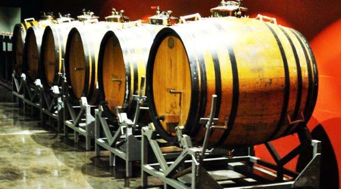 Mendoza (parte 1): Vinhos! Vinhos! Vinhos!
