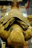 A múmia do Louvre
